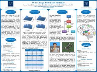 NCS: A Large-Scale Brain Simulator