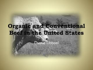 Organic and Conventional Beef in the United States
