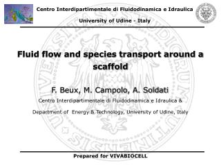 Fluid flow and species transport around a scaffold