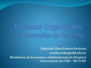 Processo Organizador  IT – Instruções de Trabalho