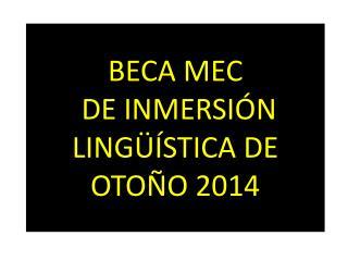BECA MEC  DE INMERSIÓN LINGÜÍSTICA DE OTOÑO 2014