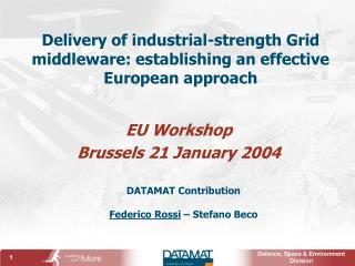 Delivery of industrial-strength Grid middleware: establishing an effective European approach