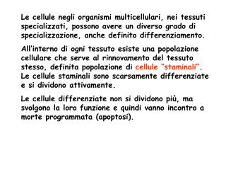 Tre categorie di cellule: