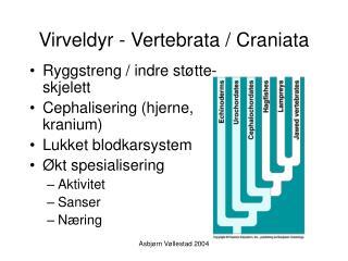 Virveldyr - Vertebrata / Craniata