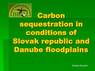 Carbon sequestration  in  conditions of  Slovak  republic  and  Danube floodplains