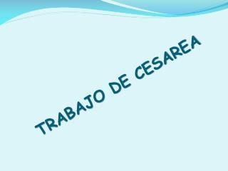 TRABAJO DE CESAREA