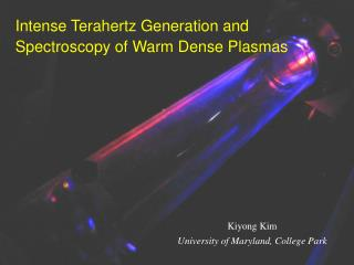 Intense Terahertz Generation and Spectroscopy of Warm Dense Plasmas