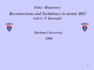 Eniko  Madarassy   Reconnections and Turbulence in atomic BEC with C. F. Barenghi