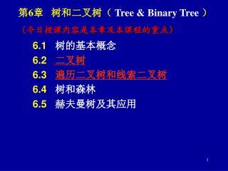 第 6 章   树和二叉树(  Tree & Binary Tree  )
