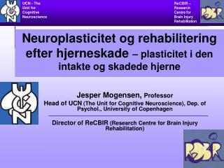 Jesper Mogensen,  Professor