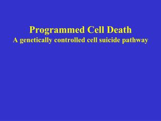 Programmed Cell Death  A genetically controlled cell suicide pathway