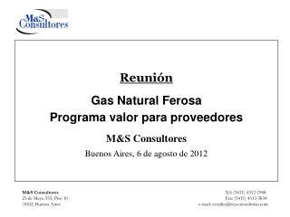 M&S Consultores    Tel: (5411) 4312-1908