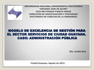 MODELO DE  EXCELENCIA DE GESTI�N  PARA EL SECTOR SERVICIOS DE CIUDAD GUAYANA.
