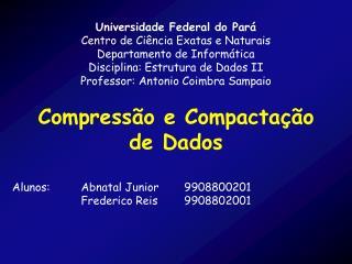 Universidade Federal do Pará Centro de Ciência Exatas e Naturais Departamento de Informática