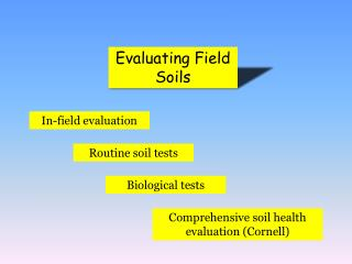 Evaluating Field Soils