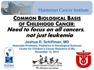 Common Biological Basis  of Childhood Cancer:  Need to focus on all cancers, 		not just leukemia