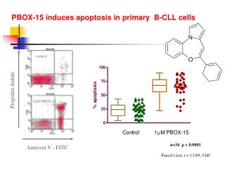 PBOX-15 induces apoptosis in primary  B-CLL cells