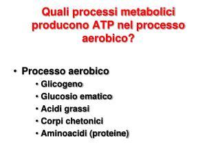 Quali processi metabolici producono ATP nel processo aerobico?