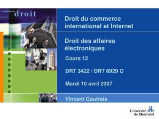 Droit du commerce international et Internet  Droit des affaires électroniques
