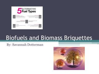 Biofuels and Biomass Briquettes