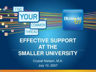 EFFECTIVE SUPPORT AT THE  SMALLER UNIVERSITY