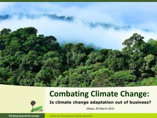 Combating Climate Change: Is climate change adaptation out of business?