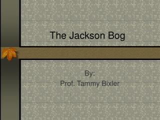 The Jackson Bog