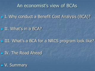 An economist's view of BCAs