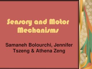 Sensory and Motor Mechanisms