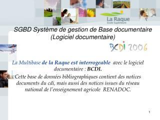 SGBD Système de gestion de Base documentaire  (Logiciel documentaire)