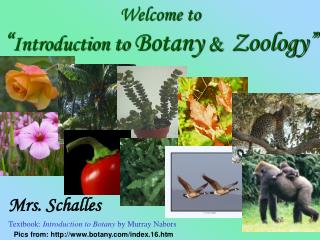 "Welcome to  "" Introduction to  Botany  & Zoology"""