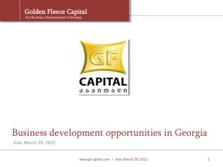 Business development opportunities in Georgia