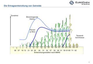 Die Ertragsentwicklung von Getreide
