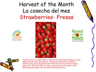 Harvest of the Month La cosecha del mes Strawberries-  Fresas