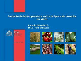 Impacto de la temperatura sobre la época de cosecha en vides