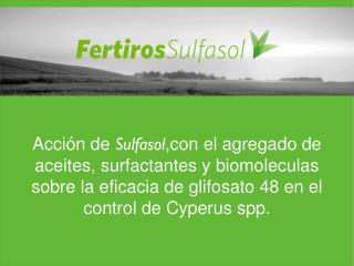 TRATAMIENTOS : Glifosato: 2, 3 y 4  lt /ha Sulfasol : 1Kg  (3%)   y 0,5 Kg  (1%)