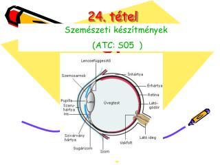 24. tétel