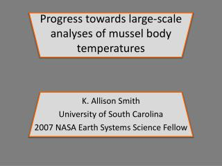 Progress towards large-scale analyses of mussel body temperatures