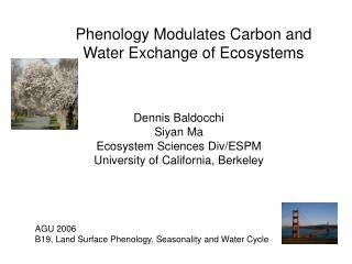 Phenology Modulates Carbon and Water Exchange of Ecosystems