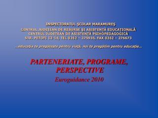 PARTENERIATE, PROGRAME,  PERSPECTIVE Euroguidance 2010
