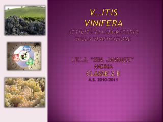 Four Mirr il vino delle 4 terre
