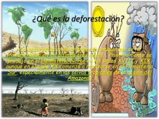 ¿Qué es la deforestación ?