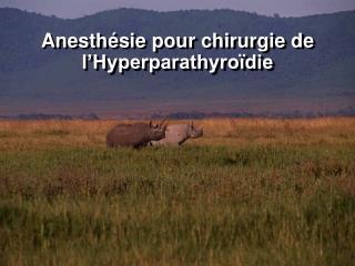 Anesthésie pour chirurgie de l'Hyperparathyroïdie