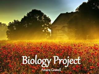 Biology Project Amara Gosnell