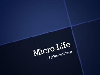 Micro Life