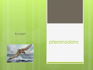 pteranodans