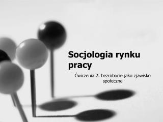 Socjologia rynku pracy