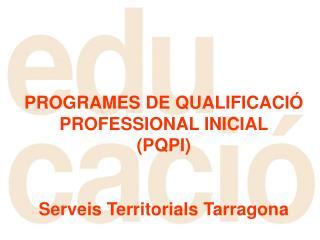 PROGRAMES DE QUALIFICACIÓ        PROFESSIONAL INICIAL              (PQPI)