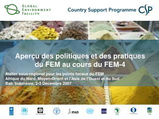 Aperçu des politiques et des pratiques du FEM au cours du FEM-4