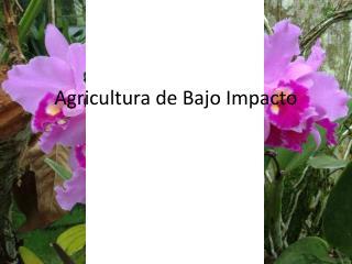 Agricultura de Bajo Impacto